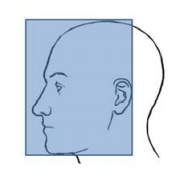 Head Coverage Requirements